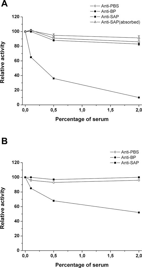 Anti-SAP antibodies block SAP and PulA enzymatic activity. (A) COH1 strain was grown in <t>pullulan</t> and assayed for the capacity to degrade pullulan in the presence of different anti-sera. The effect of specific anti-sera was tested in a dose range between 0.5 and 2%. White circles indicate the effect of a mouse <t>anti-PBS</t> serum; black circles indicate the effect of an antiserum from an unrelated surface-associated protein; black squares indicate the effect of a mouse anti-SAP serum; white triangles indicate the effect of a mouse anti-SAP serum absorbed to a CNBR resin coated with SAP. (B) as in (A) except for testing the inhibitory activity of an anti-SAP serum on GAS SF370 strain.
