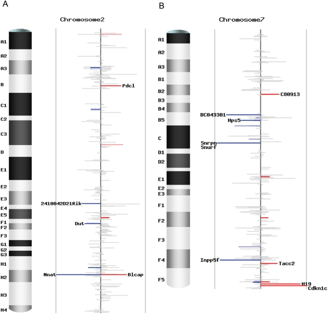 Chromosomal scans of imprinting status. (A) Imprinting status for chromosome 2. (B) Imprinting status for chromosome 7. Each plot contains unique Entrez genes covered by SNP-containing Illumina reads with counts no less than 4 in both reciprocal crosses. The height of each bar is the difference of the AKR percentage in the two reciprocal crosses (p1-p2), representing the intensity of imprinting. The color stands for the direction of imprinting, blue for paternal expression and red for maternal expression. The intensity of the color represents the significance, grey for not significant ( q -value ≥0.10), lighter blue and pink for marginally significant (0.05≤ q -value