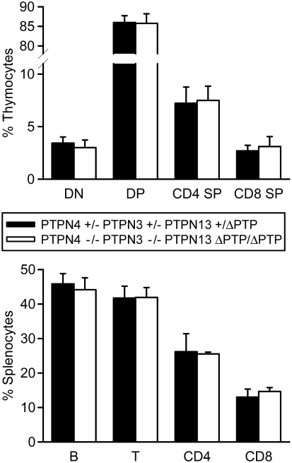 Normal T cell development in PTPN4/PTPN3 double-deficient PTPN13 ΔPTP/ΔPTP mice. Thymocytes and splenocytes from mice of the indicated genotypes were analyzed by flow cytometry for expression of T cell and B cell markers. Shown is the mean percentage representation plus one standard deviation of the indicated subpopulations among total live cells (n = 4 mice of each genotype). Differences between mice are not statistically significant.