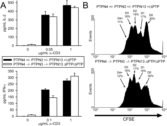Function of PTPN4/PTPN3 double-deficient PTPN13 ΔPTP/ΔPTP T cells. A) LN T cells were stimulated with the indicated concentrations of CD3 antibody and 0.5 µg/mL CD28 antibody. Concentrations of cytokines in supernatants were determined as in Figure 2 . Differences between mice are not statistically significant, excepting IFN-γ secretion at low dose anti-CD3 which is not a reproducible finding over four repeat experiments. B) Splenic T cells were labeled with CFSE and stimulated with 0.1 µg/mL CD3 antibody and 0.5 µg/mL CD28 antibody. After 72 h, CFSE dye intensity was measured by flow cytometry. Data are representative of four mice of each genotype.