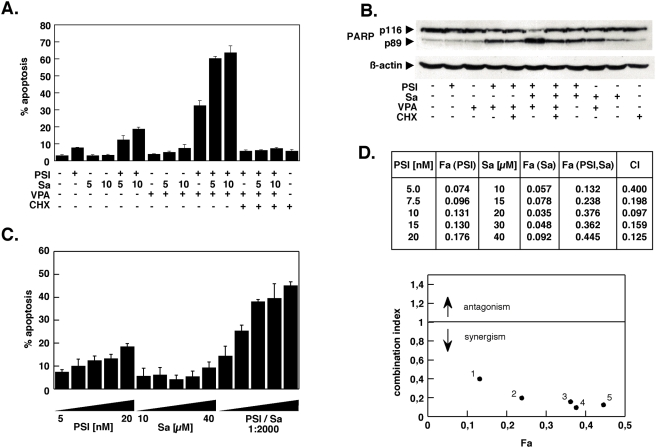 Salubrinal synergistically interacts with the proteasome inhibitor PSI to induce cell death in K562 chronic myeloid leukemia cells. (A) K562 cells were exposed to 5 nM PSI for 18 h either alone or in combination with 2 mM valproic acid and 5 or 10 µM salubrinal as indicated. The protein synthesis inhibitor cycloheximide (CHX) was used at 1 µg/ml. Apoptosis induction was assessed by propidium iodide staining and fluorescence-activated cell sorting of cells with a subdiploid (G