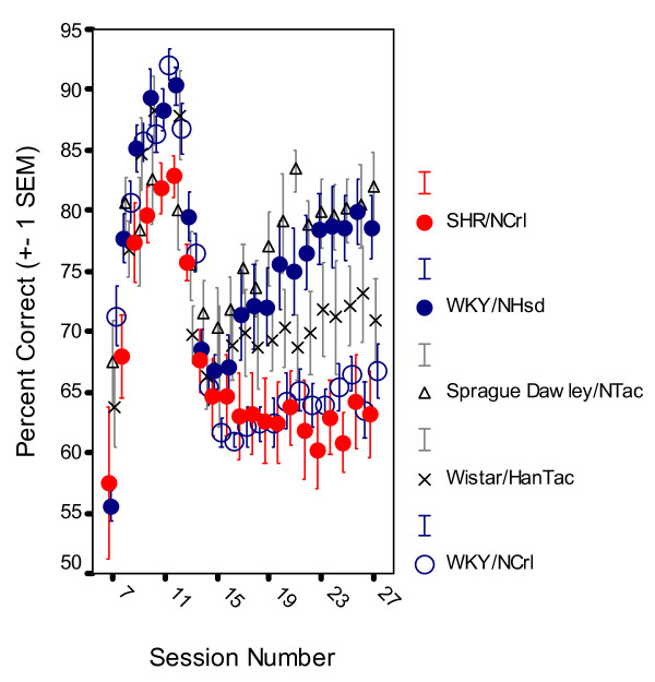 Development of sustained attention, choice of the correct lever in percent of all lever presses, by SHR/NCrl, WKY/NHsd, SD/NTac Sprague Dawley, WH/HanTac Wistar, and WKY/NCrl strains. The final schedule was introduced at session 13 (Means ± 1 SEM).