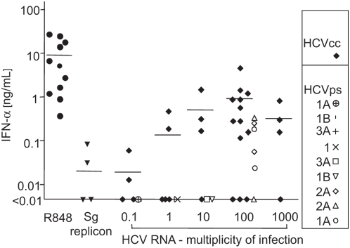 Secretion of IFN-α induced with cell culture-derived HCVcc and patient-derived HCV in pDCs from different normal healthy donors. Purified pDCs were inoculated with different quantities of HCVcc (genotype 2) or patient-derived HCV (genotypes 1a, 1b, 2a, and 3a). Viral genomes were quantified by semiquantitative RT-PCR. As negative control, a suspension prepared from cell-free supernatant of Huh7.5 cells transfected with HCV subgenomic (sg) replicon was used. This negative control suspension was concentrated and purified in the same manner as the viral suspension used for exposure of pDCs to 100 genome-containing virus particles per cell. Resiquimod (R848, 0.5 µM) was used as a positive control. Cell cultures of pDCs purified from different normal healthy donors adjusted to a concentration of 10 6 cells/ml in the presence of IL-3 were inoculated with HCV (quantified by HCV RNA copies) in a total volume of 200 µl. Secretion of IFN-α in cell-free supernatant was determined by ELISA 1 day post-stimulation. Identical symbols at a given multiplicity of infection indicate results with pDCs of different donors.