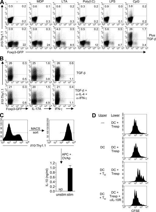 The combination of TGF-β– and CpG-activated BMDC induces IL-10–expressing CD4 T cells . (A) 10 5 D10 BMDC that were either left unactivated or preactivated with the indicated agonists were used in combination with 1 µg/ml OVA peptide to stimulate 5 × 10 5 naive CD4 T cells from 10BiT. Foxp3 gfp .OT-II mice, in the absence (top) or presence (bottom) of 5 ng/ml of recombinant human TGF-β1. On day 3, CD4 T cells were examined for expression of Thy1.1 and GFP. Numbers represent the percentage of CD4 T cells in the respective quadrants. (B) Naive CD4 T cells were stimulated as described in A with CpG-BMDC in the presence of TGF-β only or TGF-β plus anti–IFN-γ and anti–IL-4 (each at a final concentration of 10 µg/ml). On day 5, cells were restimulated for 5 h with PMA/ionomycin in the presence of brefeldin A, and viable CD4 T cells were analyzed for expression of Thy1.1, Foxp3, IL-17A, and IFN-γ. (C) Day-5 Thy1.1 + T cells (induced in the presence of CpG-BMDC and TGF-β) were MACS sorted and cultured for 24 h with Il10 −/− splenic DC in the absence (−) or presence (+) of 1 µg/ml OVA peptide. IL-10 protein in culture supernatants was quantitated by cytometric bead array. Mean cytokine concentrations ±SEM are shown. (ND, not detected). (D) 5 × 10 5 CFSE-labeled OT-II CD4 T cells were stimulated with 1.0 µg/ml OVA peptide and 10 5 IL-10–deficient splenic DC in the lower chamber of a transwell plate. In some cases, an equal number of DC or DC plus 5 × 10 5 day-5 Thy1.1 + T cells (differentiated as in C) were similarly activated in the upper chamber. Where indicated, anti–IL-10R antibody was added to the lower chamber at a final concentration of 10 µg/ml. After 4 d, cells were harvested from the bottom chamber and the CFSE profile of the CD4 T cells was analyzed by FACS. Numbers in A and B indicate the percentages of CD4 T cells in the given quadrants. All data are representative of at least two experiments.