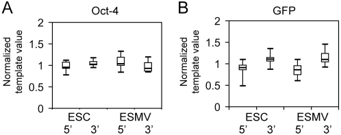 The RNA in ESMVs is not degraded. Real time quantitative RT-PCR was used to measure the level of degradation of oct-4 and GFP mRNAs in ESMVs by comparing the 5′ and 3′ amplicon ratios of these transcripts in ESMVs with those in ESCs. Significant levels of degradation were not detected with either transcript. (A) Box plot of normalized 5′ and 3′ template values for oct-4 mRNA in ESCs and ESMVs (n = 9). (B) Box plot of normalized 5′ and 3′ template values for GFP mRNA in ESCs and ESMVs (n = 12). The boxed area represents the mean±quartile and the whiskers extend out to the minimum and maximum values. Bootstrap t-tests were performed to compare the 5′:3′ ratios for each transcript in ESCs and ESMVs. No significant difference was detected between the ESC group and ESMV group for either transcript ( p > 0.1).