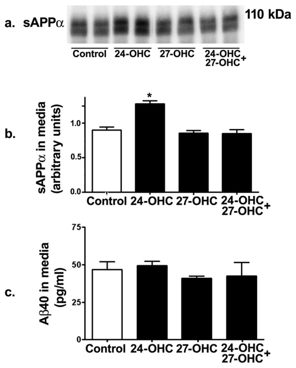 24-OHC increases processing of APP via the non-amyloidogenic pathway . Western blot (a) and densitometric analyses (b) demonstrating increased levels of sAPPα in medium of 24-OHC-treated cells. Treatment with 27-OHC or a mixture of 24-OHC + 27-OHC did not influence sAPPα levels. Levels of Aβ40 were not affected by treatment with 24-OHC, 27-OHC, or a mixture of 24-OHC + 27-OHC compared to levels in control cells (c). *p