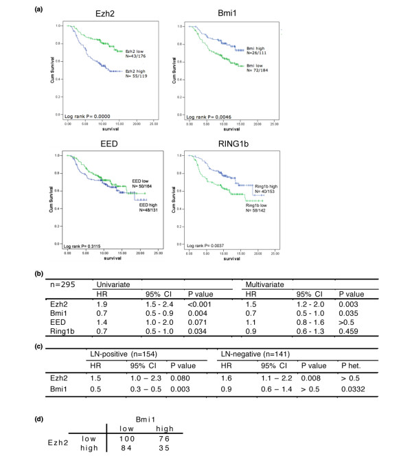 EZH2 and BMI1 are inversely correlated . (a). Univariate survival analyses by Kaplan-Meier plots and log rank tests. Patients were categorised by high or low expression of the different Polycomb group (PcG) members based on microarray data. (b) Relative risk of death evaluated by Cox regression modelling and continous PcG mRNA levels. Multivariate analysis is adjusted for tumour size, lymph node (LN) status and grade. (c) Relative risk of death based on continous EZH2 and BMI1 levels in LN-positive and LN-negative patients. P het = p value indicating heterogeneity of BMI1 levels across LN-positive and LN-negative patients. (d) Two-by-two table for categorical EZH2 and BMI1 levels. Odds ratio (OR) = 0.55 (95% confidence interval (CI) = 0.33 to 0.90) for high EZH2 among patients with high BMI1 compared with low BMI1 (chi-squared: p = 0.017).