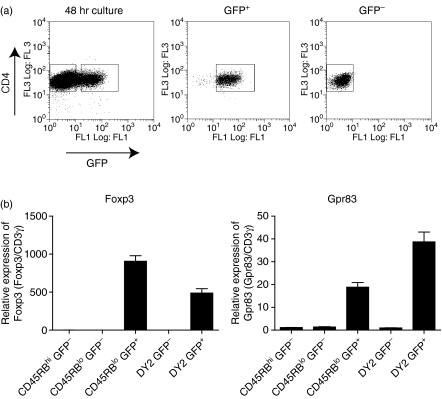 Activation-induced G-protein coupled receptor Gpr83 is restricted to forkhead/winged helix transcription factor (Foxp3)-expressing cells. (a) Naïve CD4 + CD45RB hi green fluorescent protein (GFP) − T cells were isolated from Foxp3 GFP mice by fluorescence-activated cell sorting (FACS; purity > 99%). Cells were activated with plate-bound αCD3 and αCD28 (both 10 μg/ml) for 48 hr in the presence of recombinant human transforming growth factor (TGF)-β (2 ng/ml). Cells were harvested and re-sorted based on expression of CD4 and GFP (CD4 + GFP − , > 99% purity; CD4 + GFP + , > 98% purity). (b) RNA was isolated from the sorted populations and quantitative polymerase chain reaction (qPCR) used to determine the relative expression of Foxp3 and Gpr83. CD3γ was used as an internal standard and relative mRNA levels normalized to the CD4 + CD45RB hi GFP − starting population. Results shown are representative of three independent experiments and are expressed as the mean of triplicate wells ± standard error of the mean (SEM). WT, wild type.