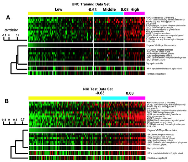 VEGF profile, glycolysis and HIF1α gene expression analyses . A) Gene expression for the VEGF profile (plus average values), for the six glycolysis genes and glycolysis centroid, HIF1α and fibroblast centroids are shown across the 146 patient UNC training data set with the tumors ordered according to their VEGF profile average values. B) Similar analysis as presented in A except the data set is the NKI patient test set.