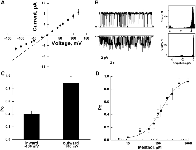 A. Representative current/voltage relationship of TRPM8: Channels were incorporated in planar lipid bilayers of synthetic POPC, POPE (3∶1) in the presence of diC 16 PtdIns(4,5)P 2 . Experimental conditions are the same as described in the legend to Fig. 5 . TRPM8 channels were stimulated with the application of 500 µM of menthol. The dashed line corresponds to the mean conductance of fully open channels, working in inward direction, this state is rarely observed due to the low open probability of this subconductance level. B: Representative current traces and all points' histograms of outward (upper) and inward (lower) currents of TRPM8 channels with clamping potentials were +60 mV and −60 mV, respectively. Experimental conditions are the same as in the legend to figure 6A . C: Open probability of TRPM8 channels operating in inward and outward directions measured at +100 mV and −100 mV. Data were analyzed from a total of 9 experiments. D: Menthol dose response of the open probability of TRPM8. Demonstrated P o values were obtained at 100 mV. Data were analyzed from a total of 36 experimens.