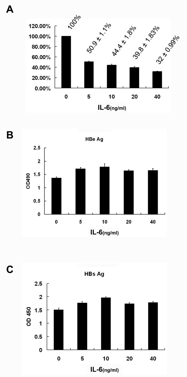IL-6 does not suppress the levels of secreted HBeAg and HBsAg . Confluent cells were treated for 6 days with various doses of IL-6 (0, 5, 10, 20, 40 ng/ml). (A) The level of extracellular viral genome-containing nucleocapsids in the culture medium was measured by real-time PCR method and normalized with total cell number. (B and C) The levels of secreted HBeAg and HBsAg in the culture medium were measured by ELISA. Results shown are representative of three independent experiments.