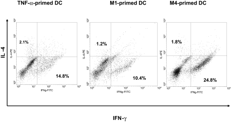 M1-, M4- and TNF-α-primed DC induced the differentiation of naïve T cells to a Th1 response at 1:5 DC/T cell ratio After 9 days of expansion in IL-2 expansion, intracellular cytokine (IFN-γ and IL-4) concentrations were measured after re-stimulation with PMA and ionomycin for 5 h. Data are one experiment representative of four independent experiments.