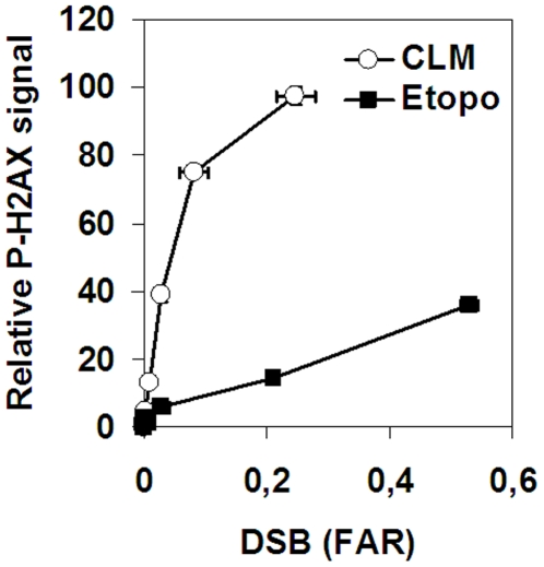 Induction of H2AX phosphorylation by etoposide- or CLM-induced DSBs. SV40-transformed fibroblasts were treated with 0–150 µM etoposide or 0–5 nM CLM before analysis of H2AX phosphorylation and DSB-level by neutral CFGE. Error bars represent variation in two separate experiments performed on different days.