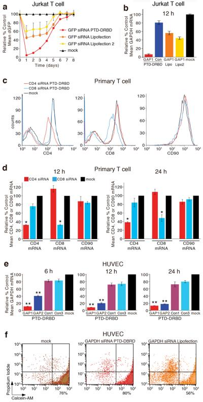 <t>PTD-DRBD</t> siRNA delivery into T cells and HUVECs ( a ) Flow cytometry analysis of dGFP RNAi knockdown decay kinetics of dividing Jurkat dGFP cells following treatment with GFP2 siRNA plus PTD-DRBD, Lipofection-2000 (Lipofection) or RNAiMAX (Lipofection 2), as indicated. ( b ) Quantitative RT-PCR analysis of endogenous GAPDH mRNA expression at 12 h post-treatment of GAPDH siRNA or GFP2 (Con) siRNA plus PTD-DRBD, GAPDH siRNA plus Lipofection-2000 (Lipofection) or RNAiMAX (Lipofection 2) in Jurkat cells, as indicated. Mean values normalized to β2 microglobulin and reported as percent of mock GAPDH control. ( c ) Flow cytometry histogram analysis of PTD-DRBD mediated CD4 or CD8 RNAi response at 1 day post-treatment of mouse primary T cells, as indicated. ( d ) Quantitative RT-PCR analysis of endogenous CD4, CD8 or CD90 mRNA expression at 12 and 24 h post-treatment of PTD-DRBD CD4 or CD8 siRNAs in primary T cells, as indicated. Mean values normalized to β2 microglobulin and reported as percent of mock control. *(P