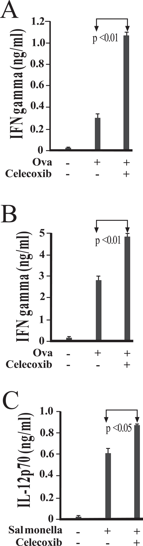 COX-2 activity influences IFN-γ and <t>IL-12p70</t> production in antigen stimulated cultures of DO11.10 CD4+ T cells. Peritoneal macrophages were isolated and cultured in the presence of medium alone (A) or viable Salmonella (B) . Following exposure for 45 minutes, cells were washed to remove any extracellular bacteria with gentamicin-containing medium. Magnetically separated splenic DO11.10 CD4 + T cells, B cells, and OVA peptide were added. To assess the role of COX-2, some cultures were supplemented with 1 uM celecoxib 20 minutes prior to infection. Levels of IFN-γ (A and B) and IL-12p70 (C) in 48-hour supernatants were measured by enzyme immunoassay, and are reported as mean values of triplicate determinations. These studies were performed three times with similar results.