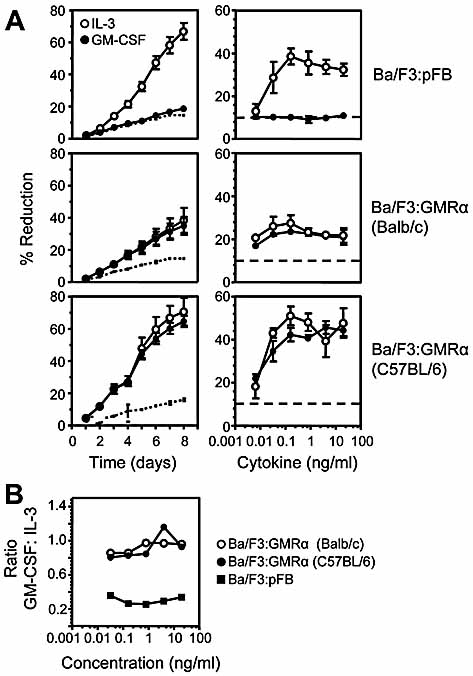 Functionality of polymorphic forms of GMRα. (A) Full-length GMRα from Balb/c and C57BL/6 mice were retrovirally transduced into Ba/F3 cells. Ba/F3 cells transduced with empty vector or GMRα-encoding vectors were cultured in the presence of 4 ng/mL of GM-CSF (filled circles) or IL-3 (open circles) for the indicated number of days (left panels) or in the indicated concentrations of cytokine for 8 days (right panels). Cell proliferation was measured by determining the percentage of reduction of Alamarblue. (B) The ratio of proliferation in response to GM-CSF and IL-3 was calculated to compare the polymorphic variants; filled squares: Ba/F3:pFB; open circles: Ba/F3:GMRα (Balb/c); filled circles: Ba/F3:GMRα (C57BL/6).