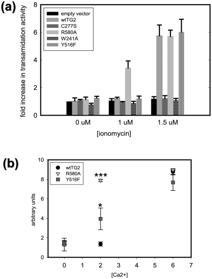 Transamidating activity of TG2 variants. Graphs showing in situ (a) and in vitro (b) transamidating activities of different TG2 mutants as a function of ionomycin concentration (µM) in the cell culture medium (a) or calcium ion added (mM) to the reaction mixture (b) (N = 3). Results are shown as mean+/−SE *p