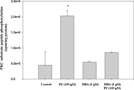 Effect of PE and DHA on PKC activity. Cardiomyocytes were treated with PE and DHA as described in the legend of Figure 1 . The total PKC activity in membrane fractions of cardiomyocytes was assayed as described in the Material and Methods section. Results are expressed as the mean±SE for three experiments and analyzed by ANOVA and Tukey's multiple comparison tests. Significant differences within groups are reported. ***P
