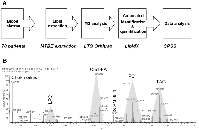 The workflow for top-down shogun lipidomic screens. A) EDTA plasma samples of 70 men (age of 22–79) was collected and lipids were extracted by methyl- tert -bytyl ether. Total extracts reconstituted in CHCl 3 /MeOH/2-propanol 1/2/4 (v/v/v) mixture, containing 7.5 mM ammonium acetate were directly infused into a LTQ Orbitrap mass spectrometer and high resolution mass spectra were acquired. 151 mass spectra were analyzed using LipidX software, which identified and quantified individual lipids. B) Representative high resolution mass spectrum of a total lipid extract of blood plasma. Spectra acquisition time was 3 min, while full sample analysis time was less than 4 min. Most abundant peaks are annotated with m/z ; shaded areas designate m/z ranges in which corresponding lipid classes were detected. Major background peaks are designated with asterisks.