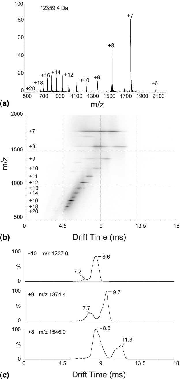 ( a ) The summed m/z spectrum from an ESI-IMS-MS data acquisition of cytochrome c analyzed in 50 mM aqueous ammonium acetate solution acidified to pH 3 showing a charge state distribution from +6 to +20 ions consistent with monomeric protein (12,359.4 Da). ( b ) ESI-IMS-MS Driftscope plot showing drift time (x axis) versus m/z (y axis) for the analysis of cytochrome c in 50 mM aqueous ammonium acetate solution acidified to pH 3. ( c ) ESI-IMS-MS drift time versus intensity graphs for the m/z 1237.0 (+10 ions; upper), m/z 1374.4 (+9 ions; middle), and m/z 1546.0 (+8 ions; lower) signals detected during the analysis of cytochrome c in 50 mM aqueous ammonium acetate solution acidified to pH 3.