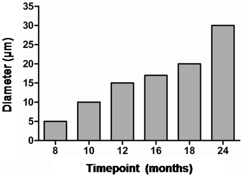 Progressive increase in the size of proteinase K resistant deposits in BSE-challenged fish. The mean diameter of the immunohistochemically detected (SaurPrP1) deposits after proteinase K–digestion is given with reference to time p.i..