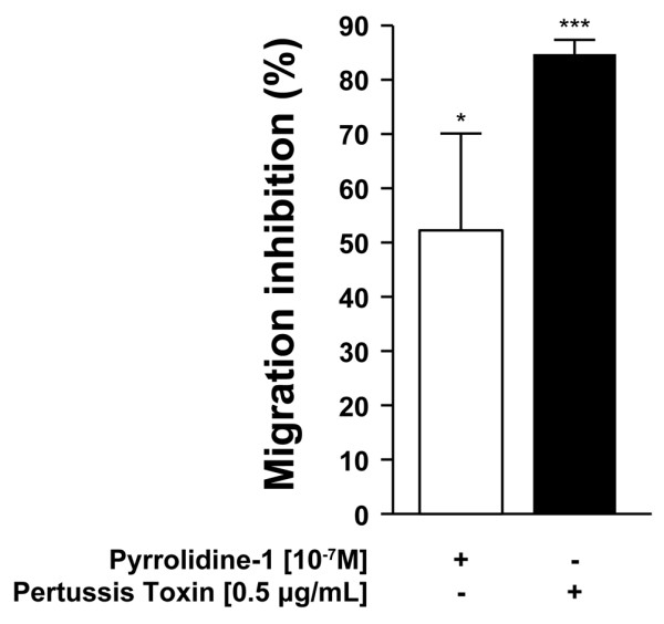 The effect of inhibitors on PMN chemotaxis towards chitosan. Freshly isolated polymorphonuclear neutrophils (PMNs) were resuspended in RPMI 1640 supplemented with 0.1% decomplemented fetal bovine serum, pre-stained with 1 μg/ml calcein-AM for 30 minutes at 37°C and incubated with 0.5 μg/ml pertussis toxin for 90 minutes and seeded on a polycarbonate filter above a well containing 50 μg/ml 80% deacetylated (80 M) chitosan. Alternatively, PMNs were incubated with 10 -7 mol/l pyrrolidine for the last 10 minutes of the incubation with calcein-AM. Chemotaxis was performed as described in Figure 1. The percentage inhibition of migration corresponds to the fluorescence of PMNs incubated with the inhibitors that migrated toward 80 M chitosan versus fluorescence of PMN incubated in media that migrated toward 80 M chitosan. This figure represents the results of at least three independent experiments. * P = 0.02 and *** P = 0.0001.