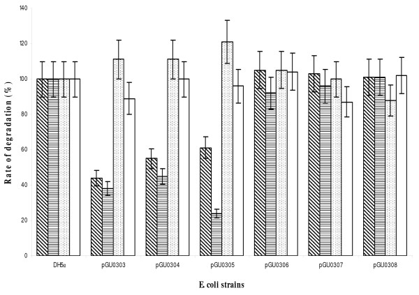 Rates of degradation of four different substrates by E. coli strains . Measurements were performed at 37°C, using one-dimensional 1 H-NMR spectroscopy (n = 3). Control: wild-type; pGUO0303: mutant transformed with pGEM-T EasyΩ cj0641 ; pGUO0304: mutant transformed with pGEM-T EasyΩ cj0774c ; pGUO0305: mutant transformed with pGEM-T EasyΩ cj1663 ; pGU0306: mutant transformed with pGEM-T EasyΩ cj064 1Ω Km R ; pGU0307: mutant transformed with pGEM-T EasyΩ cj0774c Ω Km R ; and pGU0308: mutant transformed with pGEM-T EasyΩ cj1663 Ω Km R . The activities of the wild-type were considered 100% and mutant activities are presented relative to the total control activity for the specific substrate. Histogram patterns correspond to degradation rates of PhePhn : inclined lines; PhnAce : horizontal lines; AmePhn : dots; and PhePhi : empty. The errors were calculated by determining the standard deviation from the mean of triplicate experiments.