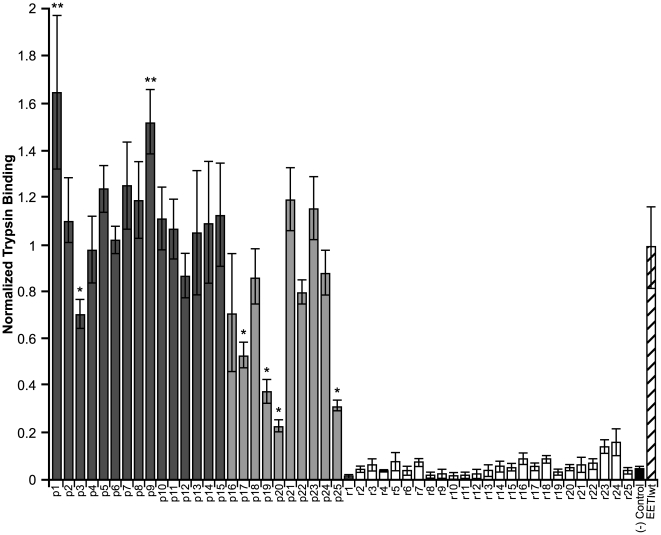 Trypsin-binding levels of EETI loop 3 predicted and randomly-generated clones. Motif-filtered clones (dark grey), least-similar clones (light grey), randomly generated clones (white), negative control (potato carboxypeptidase inhibitor knottin, black), and EETIwt (striped) were individually displayed on the surface of yeast and analyzed by flow cytometry. Predicted clones are preceded with a 'p' while randomly-generated clones are preceded with an 'r.' Protein expression levels were quantified by immunofluorescence staining of the cMyc epitope tag. Retention of the knottin fold was determined by binding of fluorescently-labeled trypsin (25 nM). Trypsin binding levels were adjusted to account for differences in protein expression levels and then normalized to the trypsin-binding level of EETIwt. Trypsin-binding experiments were performed in triplicate and error bars denote standard deviations. Predicted clones showing statistically significant differences in trypsin binding levels compared to EETIwt are marked with an asterisk (*) or a double asterisk (**) to indicate lower and higher binding levels, respectively.