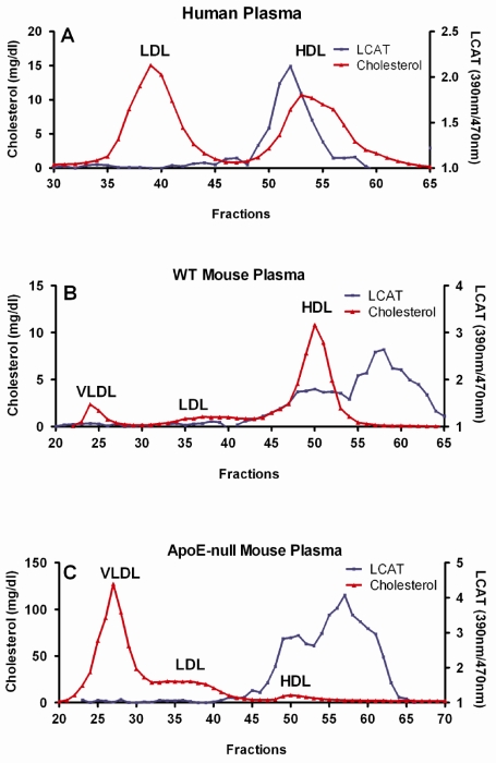 Preparation of HDL associated LCAT. Size exclusion chromatography was perfo rmed at ambient temperature using a Superose-6 10/300 column on a Bio-Rad FPLC system (Hercules, CA). A 200 µl aliquot of plasma was injected per run, and eluted in PBS with 1 mM EDTA at a flow rate of 0.2 ml/min. Total cholesterol in each fraction was measured using the Cholesterol E Kit. LCAT activity was determined as following: A. 20 µl of each fraction of human plasma were incubated at 37ºC for 5 h; B. 2.5 µl of each fraction of WT mouse plasma were incubated at 37ºC for 2 h; C. 10 µl of each fraction of apoE-null mouse plasma were incubated at 37ºC for 4 h.