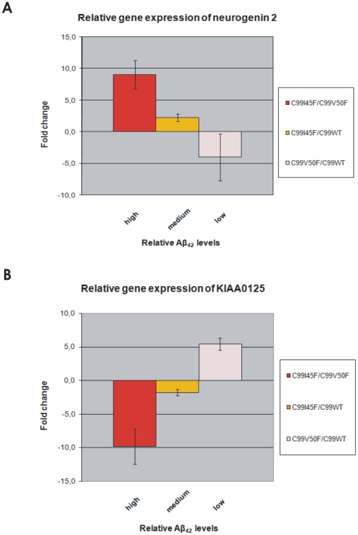 Relative gene expression of NEUROG2 and KIAA0125 measured by real-time PCR and compared to relative Aβ 42 levels. Fig. 5A and 5B show an almost linear relationship of NEUROG2/KIAA0125 expression and relative Aβ 42 levels. It is noteworthy that these relationships are in opposite directions: While NEUROG2 expression increases with increasing relative Aβ 42 levels, KIAA0125 expression decreases with increasing relative Aβ 42 levels. Importantly, the same regulation pattern was confirmed by real-time PCR as previously observed by microarray analysis: The stronger the NEUROG2 up -regulation in certain cell clones (Fig. 5A), the stronger was the KIAA0125 down -regulation in the same cell clones (Fig. 5B) and vice versa. Total-RNA was originated from the same clones as the ones used for the microarrays. This total-RNA was converted into cDNA and used for real-time PCR. Cyclophilin A expression was used for normalisation. Error bars represent the standard error of the mean (S.E.M.) of three independent cell clones.