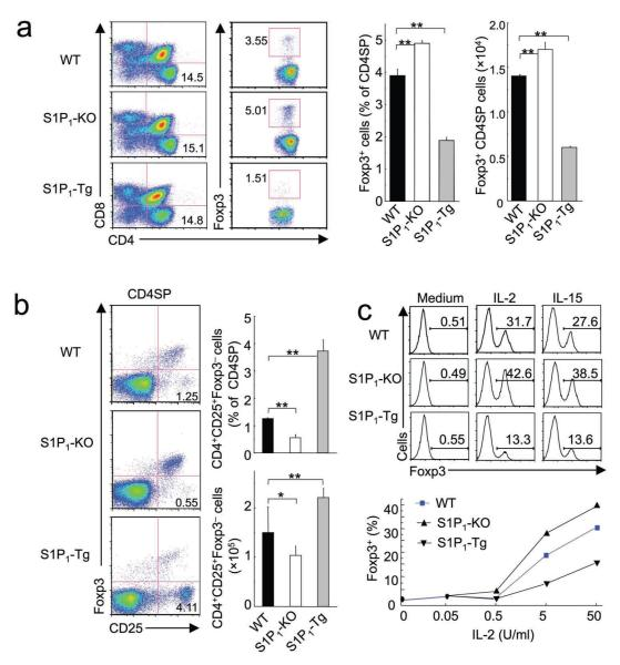 S1P 1 blocks thymic differentiation of T reg cells ( a ) Flow cytometry of total and gated CD4SP thymocytes isolated from WT control, S1P 1 -KO and S1P 1 -Tg FTOC. Panels on the right show the proportions and absolute numbers of Foxp3 + CD4SP T reg cells with the mean (+s.d.) calculated from ≥8 mice of each genotype. ( b ) Flow cytometry of gated CD4SP thymocytes from WT control, S1P 1 -KO and S1P 1 -Tg mice. Panels on the right show the proportions and absolute numbers of the CD4 + CD25 + Foxp3 − precursor population, with the mean (+s.d.) calculated from ≥8 mice of each genotype. ( c ) Induction of Foxp3 expression in the CD4 + CD25 + Foxp3 − population in vitro . CD4 + CD25 + Foxp3 − cells were purified and stimulated with medium alone, IL-2 or IL-15 for 20 h, and induction of Foxp3 expression was measured by flow cytometry. The lower panel shows an IL-2 dependent dose response curve. Data are representative of 5 independent experiments. *, P