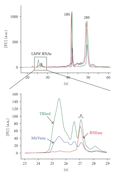 Agilent 2100 Bioanalyzer electropherogram profiles of total RNA samples (HeLa cells) extracted with TRIzol reagent (green), MirVana kit (blue), and RNEasy kit (red). Inbox: magnification of small RNA profiles for the three samples (between 23 and 29 seconds).
