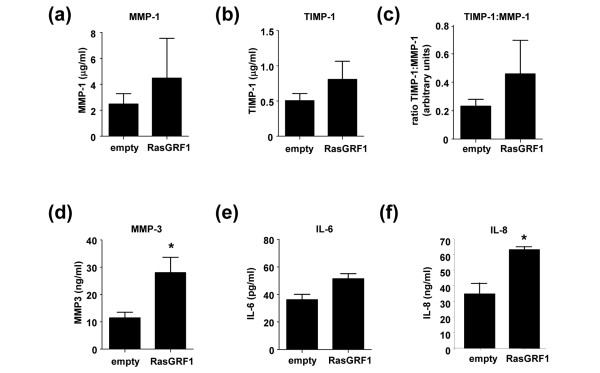 Effect of RasGRF1 overexpression on rheumatoid arthritis fibroblast-like synoviocyte matrix metalloproteinase and cytokine production. Tissue culture supernatants from rheumatoid arthritis fibroblast-like synoviocytes transfected with empty vector or with Ras guanine nucleotide-releasing factor 1 (RasGRF1) were harvested and assessed for production of (a) matrix metalloproteinase (MMP)-1, (b) TIMP-1, (c) the ratio of TIMP-1 to MMP-1, (d) MMP-3, (e) IL-6 (n = 4 each) and (f) IL-8 (n = 3) by ELISA. * P