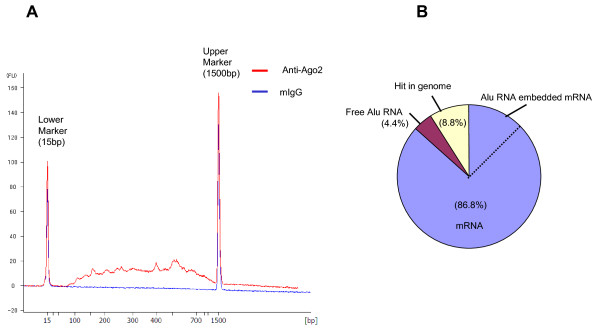 Size distribution of synthesized cDNA and categories of cDNAs isolated from HeLa cells . A: Size distribution pattern of synthesized cDNA. The amount and size distribution of cDNA were determined with the Bioanalyzer DNA 1000 Kit. The red line indicates cDNA synthesized from anti-Ago2 immunoprecipitates, while the blue line indicates that from control mouse IgG. B: Composition of isolated cDNA clones. The sequences of 91 clones were examined by BLAST search and categorized as mRNA, Alu RNA embedded mRNA, free Alu RNA, or hits in the genome. The percentage recovery of each categorized cDNA clone is shown. Alu RNA embedded mRNA (14.3%, not indicated in the figure) is included in the mRNA area (total 80%) and separated by a broken line.