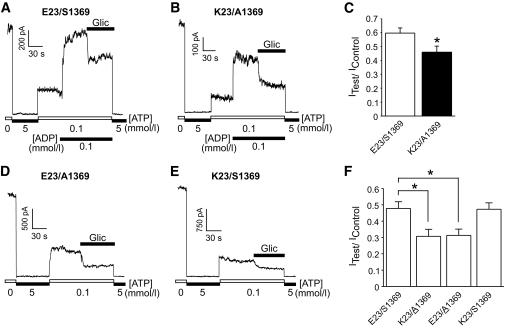 The increased gliclazide sensitivity of K23/A1369 variant K ATP channels is maintained in the presence of MgADP and is conferred upon the K ATP channel complex by the ABCC8 A1369 risk allele. A and B : Representative macroscopic current recordings showing the inhibitory effect of gliclazide (300 nmol/l) on the two variants in the presence of MgADP. C : Grouped data demonstrating that the K23/A1369 variant K ATP channels are significantly more sensitive to gliclazide in the presence of MgADP than the E23/S1369 variant K ATP channels. n = 10–12 patches per group. D–F : Representative current recordings and grouped data showing the increased gliclazide inhibitory effect is dependent on the presence of the ABCC8 A1369 variant and not the KCNJ11 K23 variant. n = 15 patches per group. * P