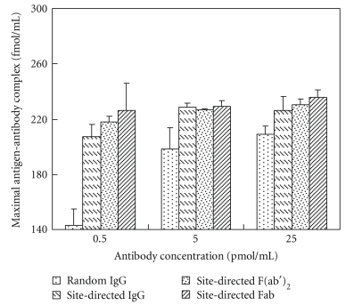 Comparison of the reactive antibody densities immobilized on the solid surfaces via biotin-streptavidin linkage. At a constant concentration of antibody, the reactive antibody density was determined by means of Scatchard analysis. The same procedure was repeated with different antibody preparations of IgG, F(ab′) 2 , and Fab. Standard deviations of triplicate repetition for each measurement were shown.