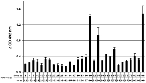 Identification of HPV-16 E7 peptide sequences involved in the interaction with GSTP1. The entire HPV-16 E7 amino acid sequence, reproduced as 12-mers with a 9 amino acid overlap, was synthesized on 30 different polypropylene rods. The histogram represents the ability of each 12-mer oligopeptide to bind recombinant GSTP1. The histogram corresponding to the 30 th rod refers to amino acids 88–99 because a Gly has been added to the last C-terminal HPV-16 E7 amino acid in order to complete the 12-mer. Values are averages of three different experiments±SD.