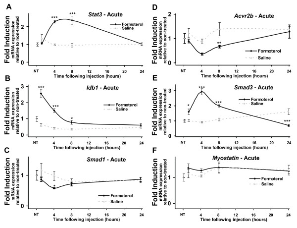 Acute systemic administration of formoterol alters the expression of genes associated with muscle growth and differentiation at multiple timepoints . Quantitative RT-PCR was used to assay the expression of A . Stat3 , B . Idb1 , C . Smad1 , D . Acvr2b , E . Smad3 , and F . Myostatin mRNAs in tibialis anterior over acute timepoints. Muscles were removed at 1, 4, 8 and 24 hours following a single intraperitoneal injection of formoterol or saline vehicle (NT = no treatment). Results were normalized against 36B4 at each timepoint. Statistical significance was assessed using a one-way ANOVA with Bonferroni's post-test where p