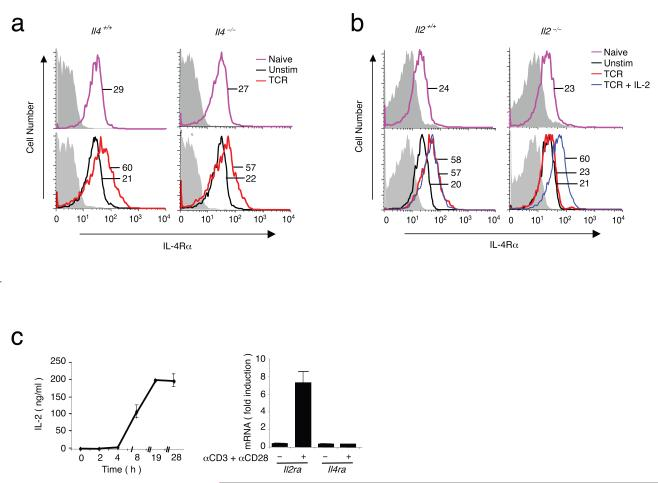 IL-2 is important for TCR-induced IL-4Rα expression. ( a ) Basal IL-4Rα expression in splenic CD4 + T cells freshly isolated from Il4 +/+ and Il4 -/- mice (top) and after activation with anti-CD3 and anti-CD28 for approximately 20 h (bottom). ( b ) As in ( a ) except Il2 -/- instead of Il4 -/- mice were used and cells were stimulated with anti-CD3 and anti-CD28 alone or with 100 U/ml of IL-2. Experiments were repeated three times with six mice each, with similar results in each case. ( c ) Left, time course of IL-2 protein production by splenic CD4 + T cells from Balb/c mice that were treated with anti-CD3 and anti-CD28. IL-2 was measured by double antibody ELISA. Right, purified splenic CD4 + T cells from C57BL/6 mice were not treated or treated with anti-CD3 and anti-CD28 for 4 h, after which RNA was extracted, and Il4ra and Il2ra mRNA expression was measured by real-time PCR. The experiment shown is representative of three independent experiments.