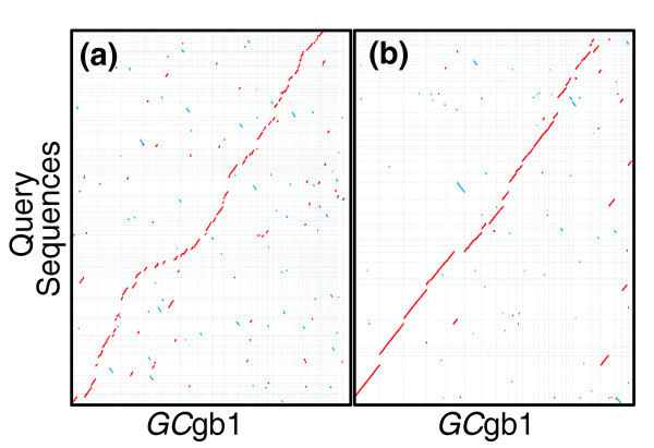 Comparison of Forge Sanger/454/Illumina assemblies against GC gb1. Alignments of scaffolds greater that 100 kb - (a) 'Sanger/454/IlluminaDA' (approximately 24 Mb on 80 scaffolds) and (b) 'Sanger/454/IlluminaPA' (approximately 28.7 Mb on 46 scaffolds) - on the y-axis against the manually finished genome sequence ( GC gb1) on the x-axis.