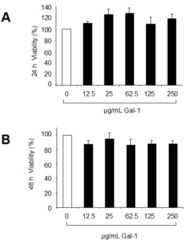 <t>RPE</t> cell viability was unaffected by galectin-1. Human RPE cells were seeded in 96-well plates at an initial density of 1×10 4 cells/well in <t>DMEM</t> supplemented with 10% FCS. Cells were cultured overnight before the indicated concentrations of galectin-1 were added to the medium in DMEM containing 2% FCS, and cell survival was assessed by MTT assay after 24 h ( A ) and 48 h ( B ) of culture. RPE cells cultured with incubation medium alone served as controls. The values were normalized to untreated controls (100%) and represent the mean±SD of six experiments performed in duplicate wells.