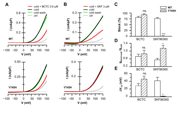 Electrophysiology confirms the differential effects of the Y745H mutation on BCTC and SKF96365 antagonism . Whole-cell I-V curves from voltage ramps (-100/+150 mV) of TRPM8-wt and TRPM8-Y745H expressing HEK293 cells during cooling in the presence and absence of A , 0.6 μM BCTC; and B , 3 μM SKF96365. Wash traces recorded 3 minutes after removal of the antagonist from the bath are included to show the reversible nature of the inhibition. C , Summary histogram of experiments depicted in A and B, showing the block of cold-evoked currents by 0.6 μM BCTC and 3 μM SKF96365 at a membrane potential of +80 mV. D - E , Parameters obtained from fits of I-V data to equation ( i ). D , Antagonist-induced change in maximum conductance during cooling in cells expressing TRPM8-wt and TRPM8-Y745H. The data are normalized to the value during cooling in control solution of the same cells, (g cold+blocker /g cold ). E , Antagonist-induced shifts of the midpoint of voltage activation (V 1/2 ) of TRPM8-wt vs . TRPM8-Y745H during cooling. The data are represented with respect to the value of V 1/2 in the absence of blocker (ΔV 1/2 = V 1/2, cold+blocker - V 1/2, cold ). In panels C-E, statistical significance was assessed with Student's unpaired t -test, n = 2-6.