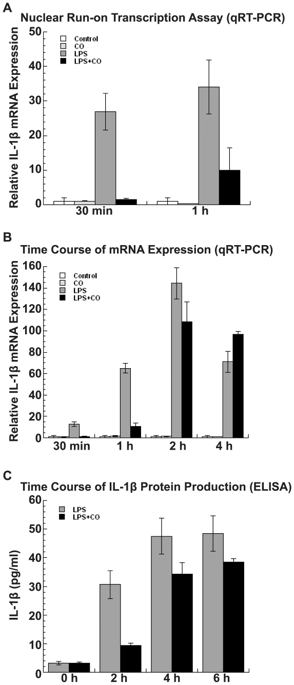 CO suppression of LPS-induced IL-1β transcription, mRNA expression, and protein production. (A) Nuclear run-on assays in THP-1 cells (2×10 7 ) showed that CO represses IL-1β transcription by almost 98% within 30 min of LPS stimulation (p = 0.001) and the effect decreased to 67% at 60 min (p = 0.01). (B) A time course analysis of IL-1β mRNA expression in THP-1 cells (2×10 6 ) by qRT-PCR showed that CO strongly suppressed LPS-induced IL-1β mRNA by more than 90% within 30 min of exposure (p
