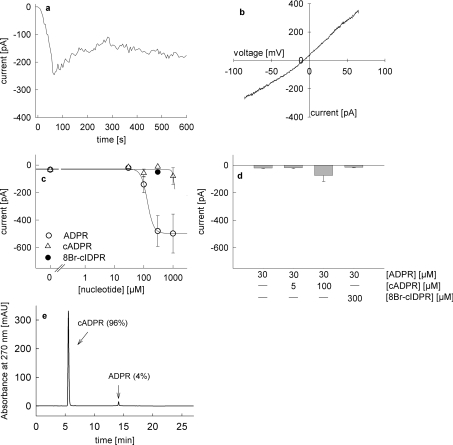 Activation of endogenous TRPM2 currents in Jurkat T-cells by infusion of ADPR, cADPR and 8-Br- N 1 -cIDPR All experiments were carried out with 2 mM extracellular Ca 2+ and with unbuffered intracellular Ca 2+ as described in [ 35 ]. Voltage ramps from −85 mV to +65 mV were applied every 5 s. ( a ) Representative membrane current over time recorded at −80 mV induced by perfusion with 300 μM ADPR. ( b ) Representative current–voltage relationship derived from currents evoked by voltage ramps from −85 mV to +65 mV. ( c ) Concentration–response relationship for activation of TRPM2 currents by infusion of ADPR (○, n =6–8), cADPR (▵, n =5–8) and 300 μM 8-Br- N 1 -cIDPR (●, n =6). Results represent means±S.E.M. of maximum current at −80 mV. ( d ) TRPM2 currents at −80 mV after infusion of 30 μM ADPR ( n =8), co-infusion of 5 μM cADPR and 30 μM ADPR ( n =9), 100 μM cADPR and 30 μM ADPR ( n =8), and 300 μM 8-Br- N1 -cIDPR and 30 μM ADPR ( n =6). Results represent means± S.E.M of maximum current at −80 mV. ( e ) RP-HPLC analysis of cADPR used in the infusion experiments.