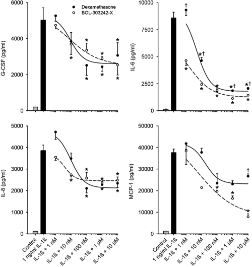BOL-303242-X demonstrates similar activity as dexamethasone (DEX) in reducing IL-1ß-induced cytokine release from human conjunctival fibroblasts. Cells were pretreated with BOL-303242-X or DEX for 2 h, and then further treated for 18 h with vehicle (0.1% DMSO), IL-1ß, BOL-303242-X, DEX, or combinations of them. Cytokine content in the conditioned media was determined by Luminex. Data are means±SEM or geometric means±SE estimated by the Taylor Series expansion for the MCP-1 data; n=3. The asterisk indicates a p≤0.05 versus that for IL-1ß. The dagger indicates a p≤0.05 versus BOL-303242-X at same concentration. Statistical analysis was performed using two-way ANOVA followed by the Tukey-Kramer test on raw data for G-CSF and IL-8. Data were elevated to the power of 0.4 for IL-6 and by taking the logarithm of MCP-1 data. A Student's t-test was used to determine whether IL-1ß was effective at increasing cytokine release. The solid bar is statistically significant versus the gray bar at increasing cytokine release.