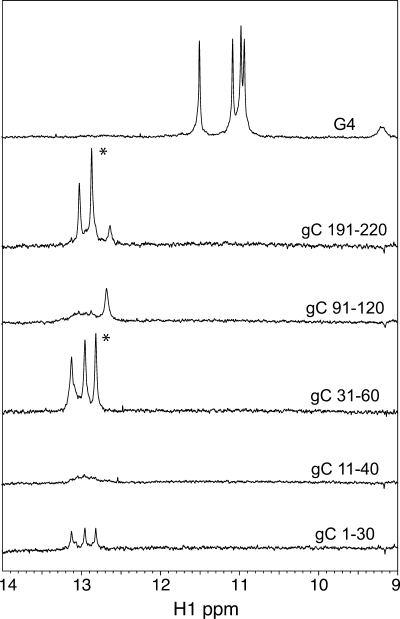 1D 1 H spectra of G-quartet DNA and selected gC 30-mer DNA oligonucleotides. A portion of the 1D 1 H spectra (9–14 p.p.m.) collected on 0.5 mM G4 DNA [TTGGGGTT] 4, gC 191–220, gC 91–120, gC 31–60, gC 11–40 and gC 1–30 at 25°C in 50 mM Tris pH 8, 150 mM KCl and 10% D 2 O. Spectra were scaled using a resolved H1' ribose signal. Asterisks (*) indicate prominent peaks detected in gC 191–220 and gC 31–60 sequences, two sequences that were not shifted by the ICP27 in EMSA experiments ( Figure 2 ).