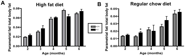 The mass of parametrial fat pads does not differ with genotype. The mass of parametrial fat pads for TCF8+/− (black bars) and WT controls (gray bars) ages 2–6 months for mice fed ( A ) a high fat diet or ( B ) regular chow was determined by weighing. Note differences in the y-axes. Data are represented as a ratio of parametrial fat weight to total body weight. n = 5–12.