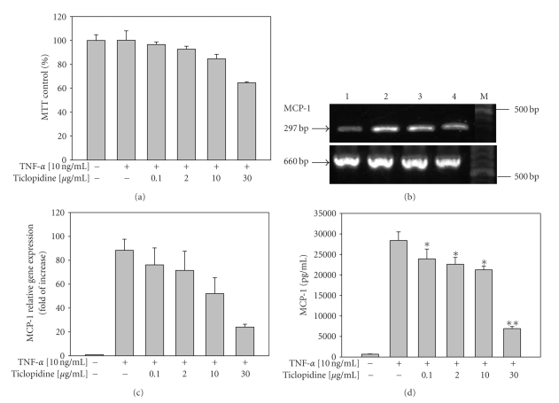 Reduction of MCP-1 mRNA and protein levels by ticlopidine in HUVECs. HUVECs were incubated with serum-free medium for 12 hours before different concentrations of ticlopidine were added, after 12 hours incubation cells were stimulated with/without TNF- α (10 ng/mL) for another 24 hours. (a) Cell growth was analyzed by MTT. Results are mean ± SEM ( n = 3). (b) Total RNA was extracted and analyzed by RT-PCR. Lane 1, without TNF- α ; lane 2, TNF- α (10 ng/mL) alone; lane 3, TNF- α + ticlopidine (0.1 μ g/mL); lane 4 TNF- α + ticlopidine (30 μ g/mL); M denotes molecular size marker. The lower panel is β -actin as internal control. Results are representative of one of three independent experiments. (c) Relative amount of MCP-1 mRNA level was determined by quantitative real-time RT-PCR. (d) Culture supernatants were analyzed by ELISA. Data are expressed as the mean ± SEM of duplicate wells and are representative of five individual experiments. Significantly different versus TNF-treated alone * P