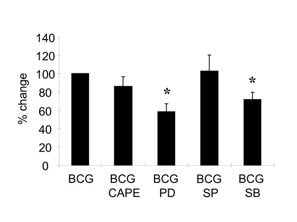 BCG-induced MKP-1 expression is dependent on p38 MAPK and ERK1/2 . Human monocytes were pretreated with several inhibitors including PD98059 (20 μM), SB203580 (100 nM), SP600125 (100 nM), and CAPE (5 μg/ml) for 1 hour. BCG (MOI = 1 CFU/cell) was then added for 1 hour and RNA was harvested. Levels of MKP-1 were measured by QPCR. Percentage change was defined as the percentage of the fold induction of (BCG + inhibitor) over the fold induction of BCG without the inhibitor. Sample of BCG was set as 100% for comparisons. Independent experiments were performed on blood cells from 4 different donors and the results are shown as mean ± SD. * = p