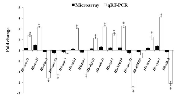 Comparison of expression of representative genes selected from microarray data with qRT-PCR . Comparison of fold change values from microarray data with expression ratios calculated from qRT-PCR. Values were determined using qRT-PCR and represents relative expression of genes between L5M and OHB. The relative expression of the target gene ( Hb-sec-23 : Yeast sec homolog, Hb-co-II : Cytochrome c oxidase II, Hb-dao-3 : Dauer or aging adult overexpression, Hb-unc-68 : Uncoordinated, Hb-asp-3 : Aspartyl protease, Hb-hid-1 : High temperature induced dauer formation, Hb-fat-2 : Fatty acid desaturase, Hb-daf-21 : Abnormal dauer formation, Hb-rab-33 : RAB family member, Hb-spl-1 : Sphingosine-1-phosphate lyase) normalized to Hb-18s :18S rRNA and relative to the expression of control. Bars represent standard errors calculated from 4 replicates of each experiment. *Significant difference ( P